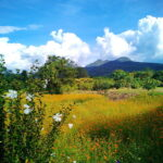Getting to know 3 seasons in Thailand