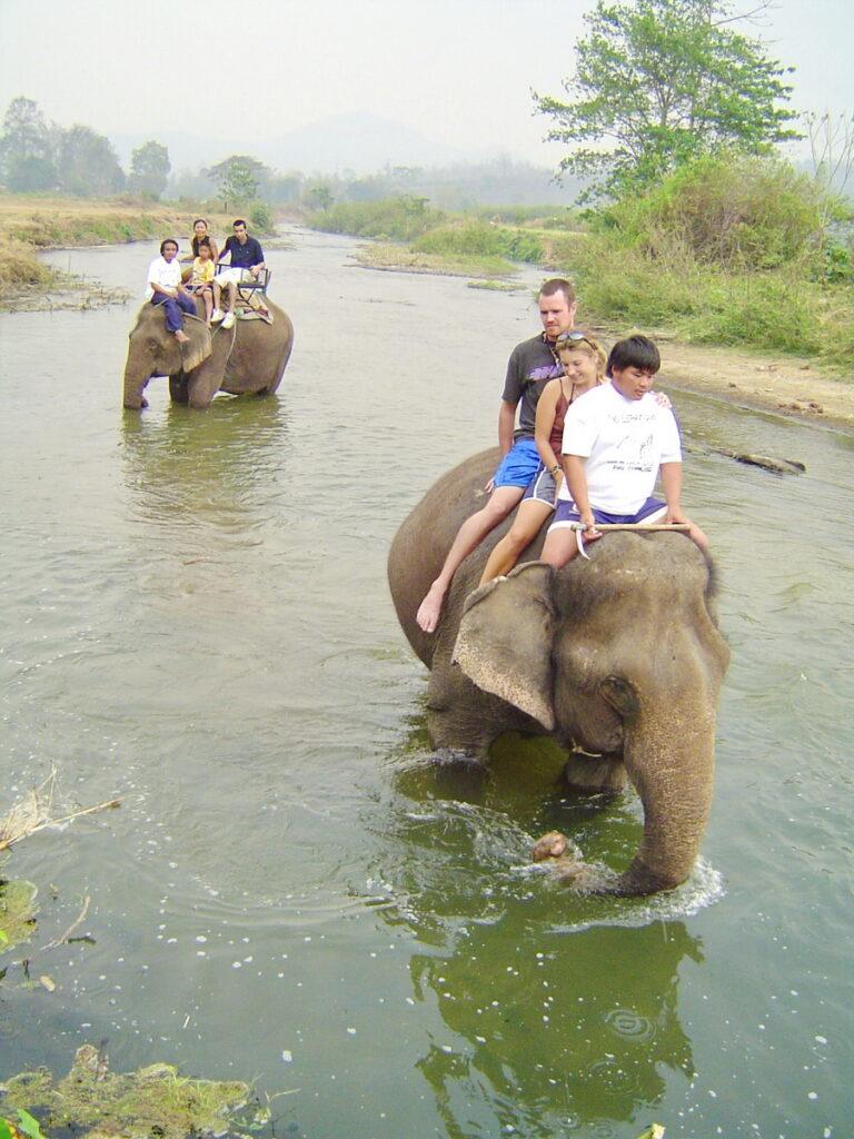 pai elephant